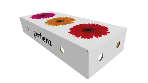 Pap-emballage til blomster